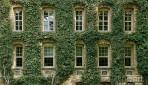Binghamton: an Ivy at Last